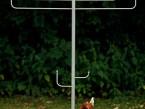 Lichtobjekt »Chanukkia« - de greiff design